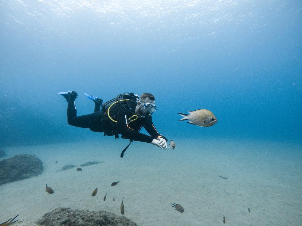 Unterwasser beim Schnuppertauchen auf Lanzarote