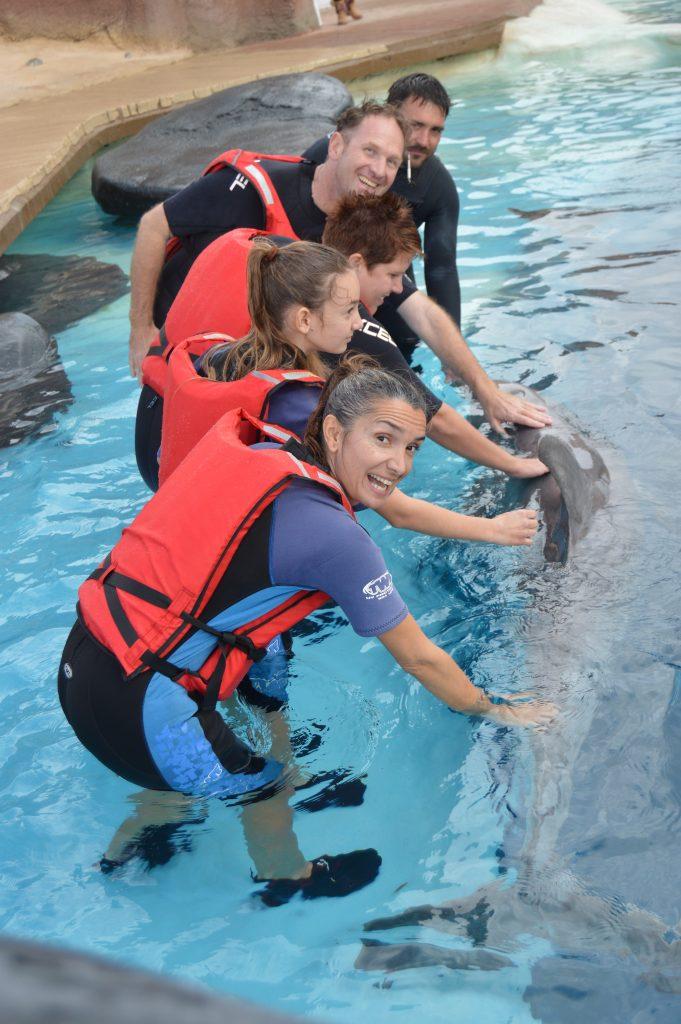 Gruppenbild mit Delfin