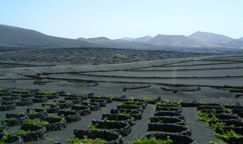 La Geria im Süden von Lanzarote
